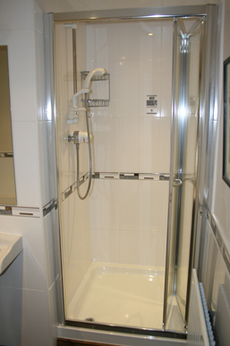 Master-Bathroom-Shower-Cubical